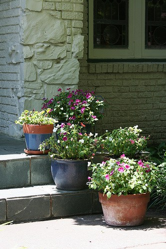 Front Entryway Landscaping