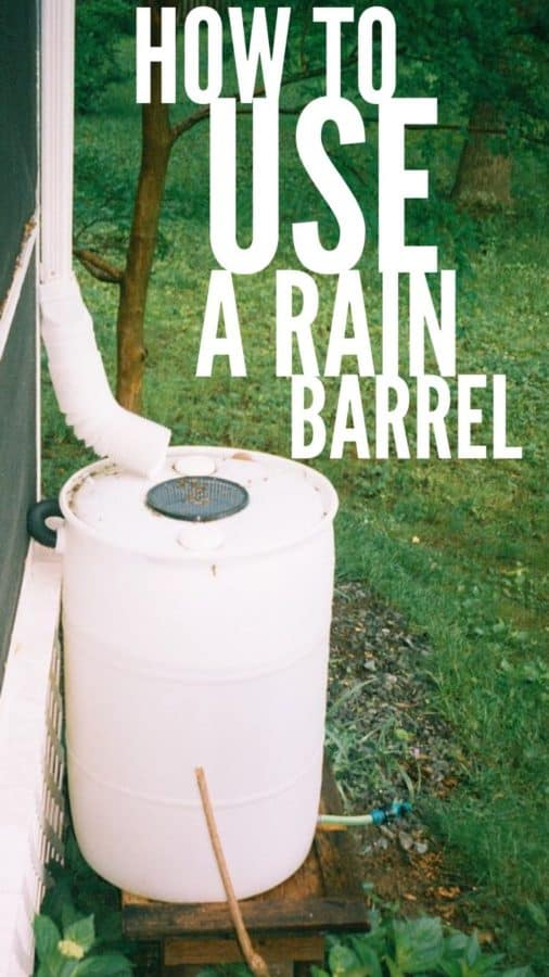 using rain barrels for rainwater harvesting