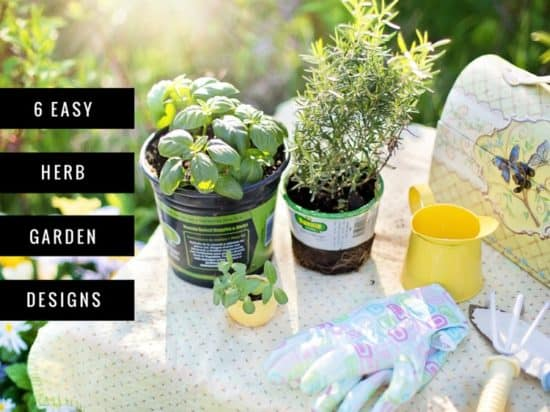 Herb Garden Design 6 Things You Need to Know