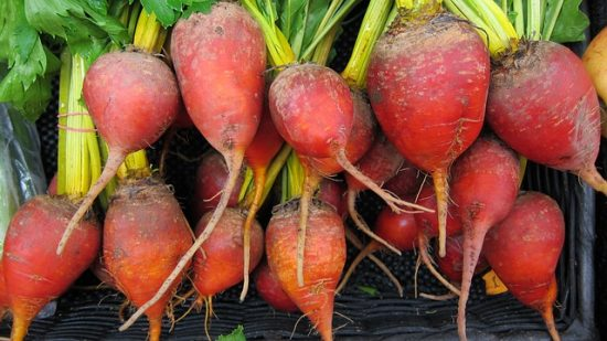 How to Grow Beets in the Home Garden