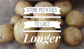 Storing Potatoes