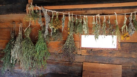 How to Dry Summer Flowrers