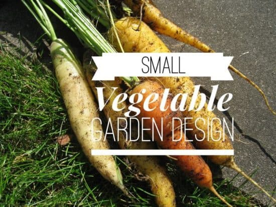 how to lay out a small vegetable garden