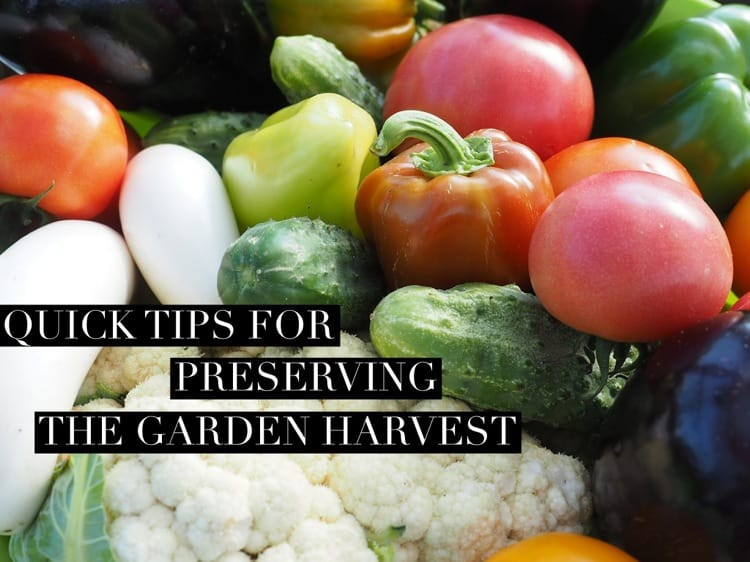 Quick Tips for Preserving the Garden Harvest