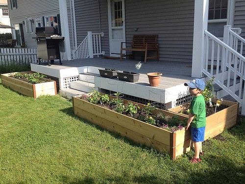 Organic Gardening Tips For Raised Beds