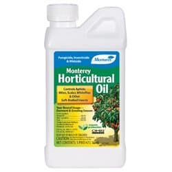Horticultural (Mineral) Oil for aphid control