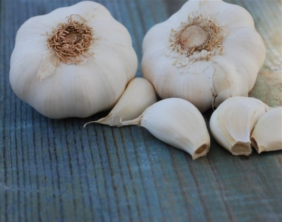 how to make garlic honey infusion