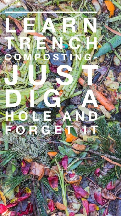 learn to trench compost