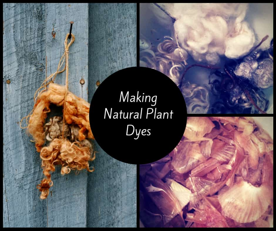 Making Natural Dyes From Fruits