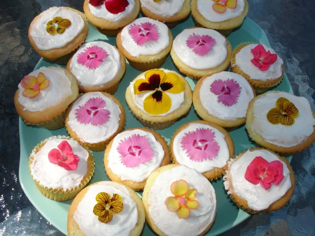 List Of Edible Flowers For Cakes