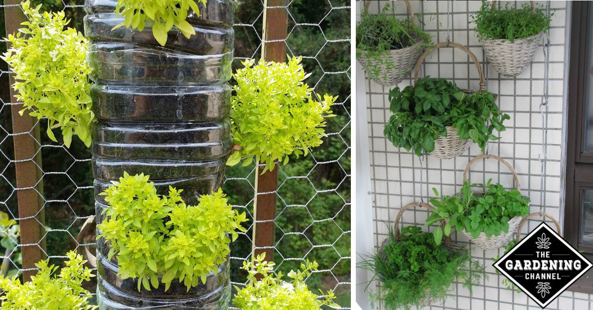 10 Fun Vertical Gardening Ideas