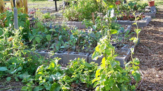4 strange diy raised bed garden ideas you could build for Channel 4 garden design ideas