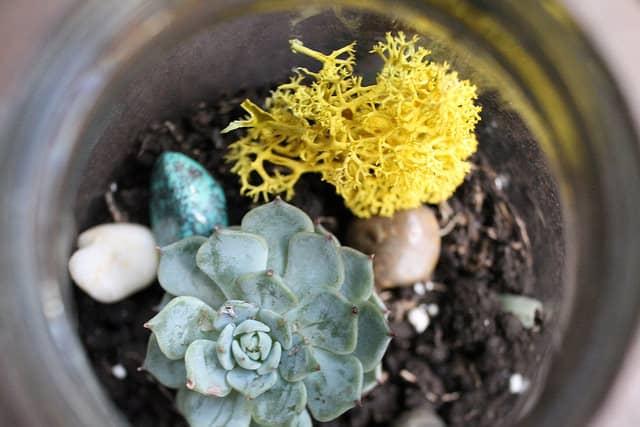 7 Brilliant Mason Jar Gardening Ideas Gardening Channel