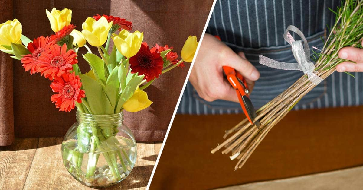 15 Ways To Make Cut Flowers Last Without Chemicals Gardening Channel